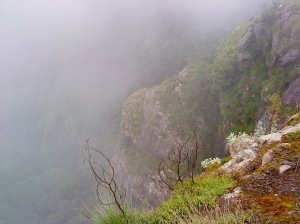 Kodaikanal_Suicide_Point